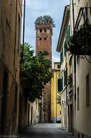 Les principales villes du nord de l'Italie voyage roadtrip tour du monde aventure Lucca Lucques