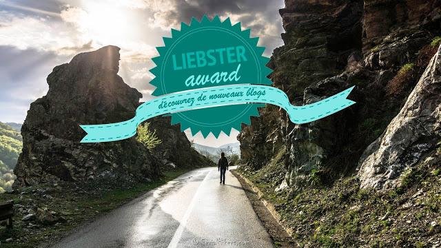 Jul&Gaux SerialHikers autostop hitchhiking aventure adventure alternative travel voyage volontariat volonteering liebster awards