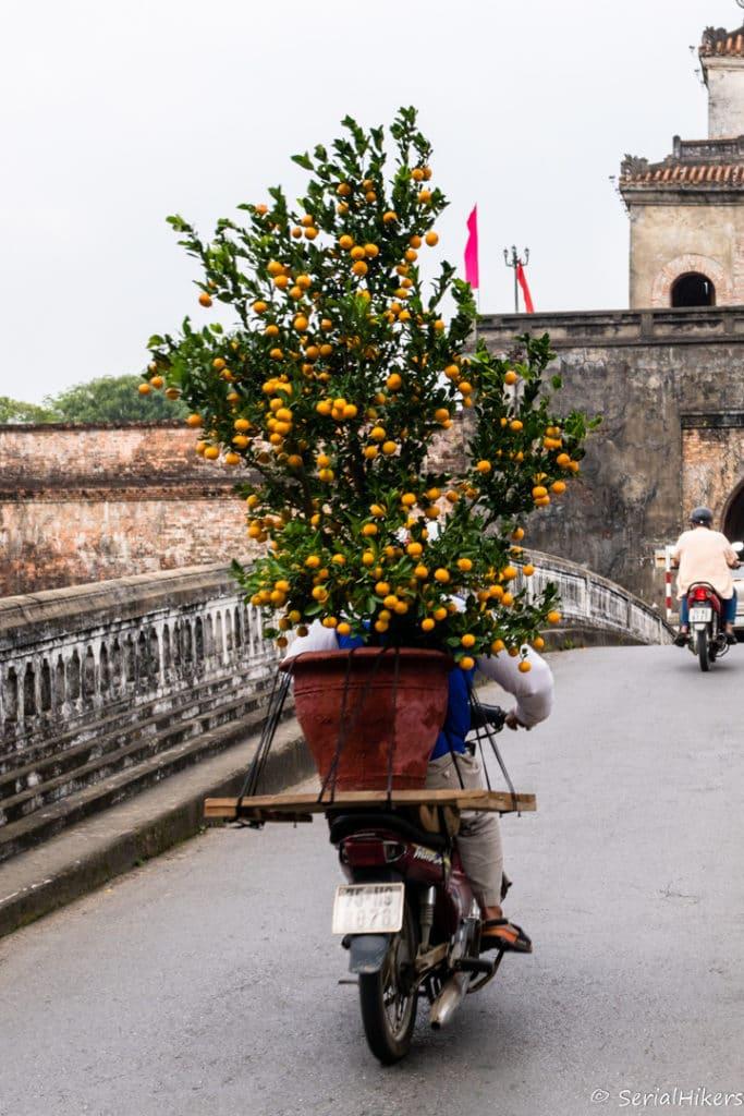SerialHikers stop autostop world monde tour hitchhiking aventure adventure alternative travel voyage sans avion no fly vietnam hue fete Tet